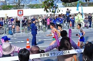 さが桜マラソン2014 (6)