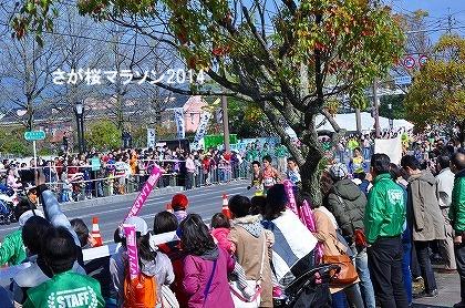 さが桜マラソン2014 (5)