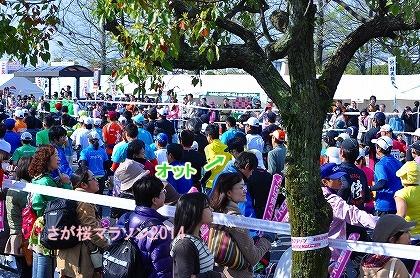 さが桜マラソン2014 (11)
