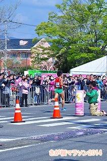 さが桜マラソン2014 (20)