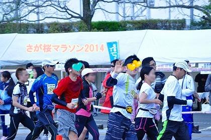 さが桜マラソン2014 (30)