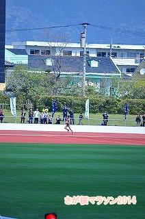 さが桜マラソン2014 (34)