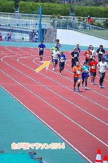 さが桜マラソン2014 (58)
