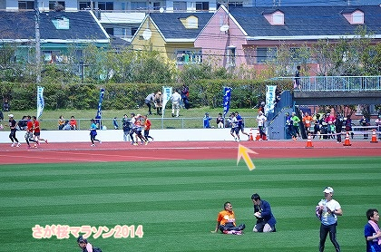 さが桜マラソン2014 (56)