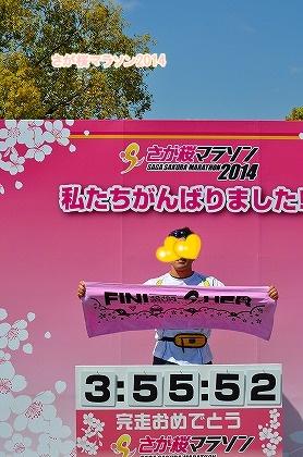 さが桜マラソン2014 (72)