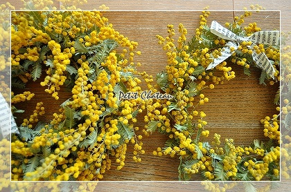mimosairoiro (5)