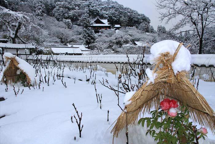 長谷寺 雪景色3