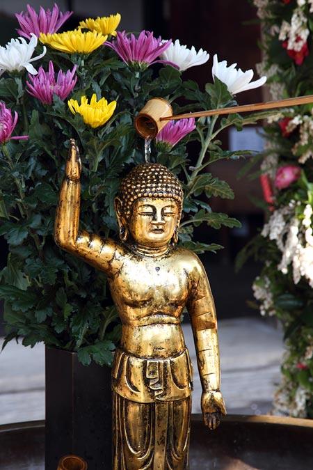 仏生会 東大寺2