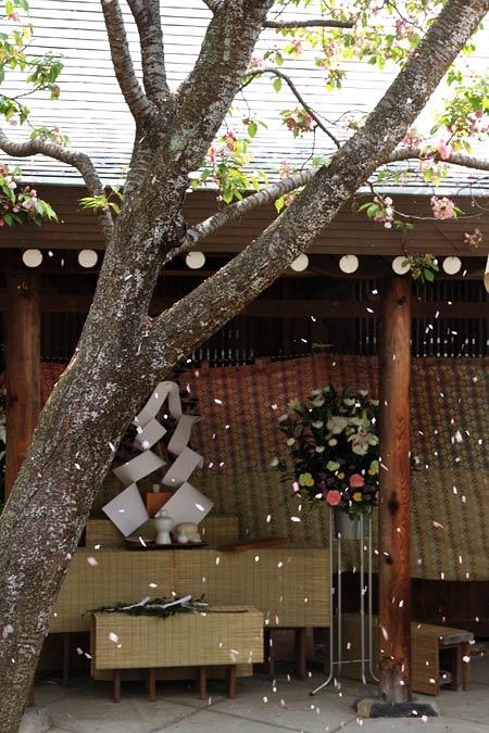 氷室神社 献氷祭・舞楽2