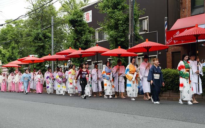 率川神社 ゆり祭り1