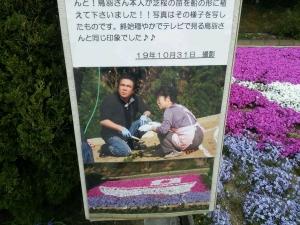 芝桜 鳥羽一郎さん