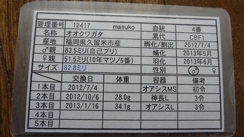 828mm.jpg