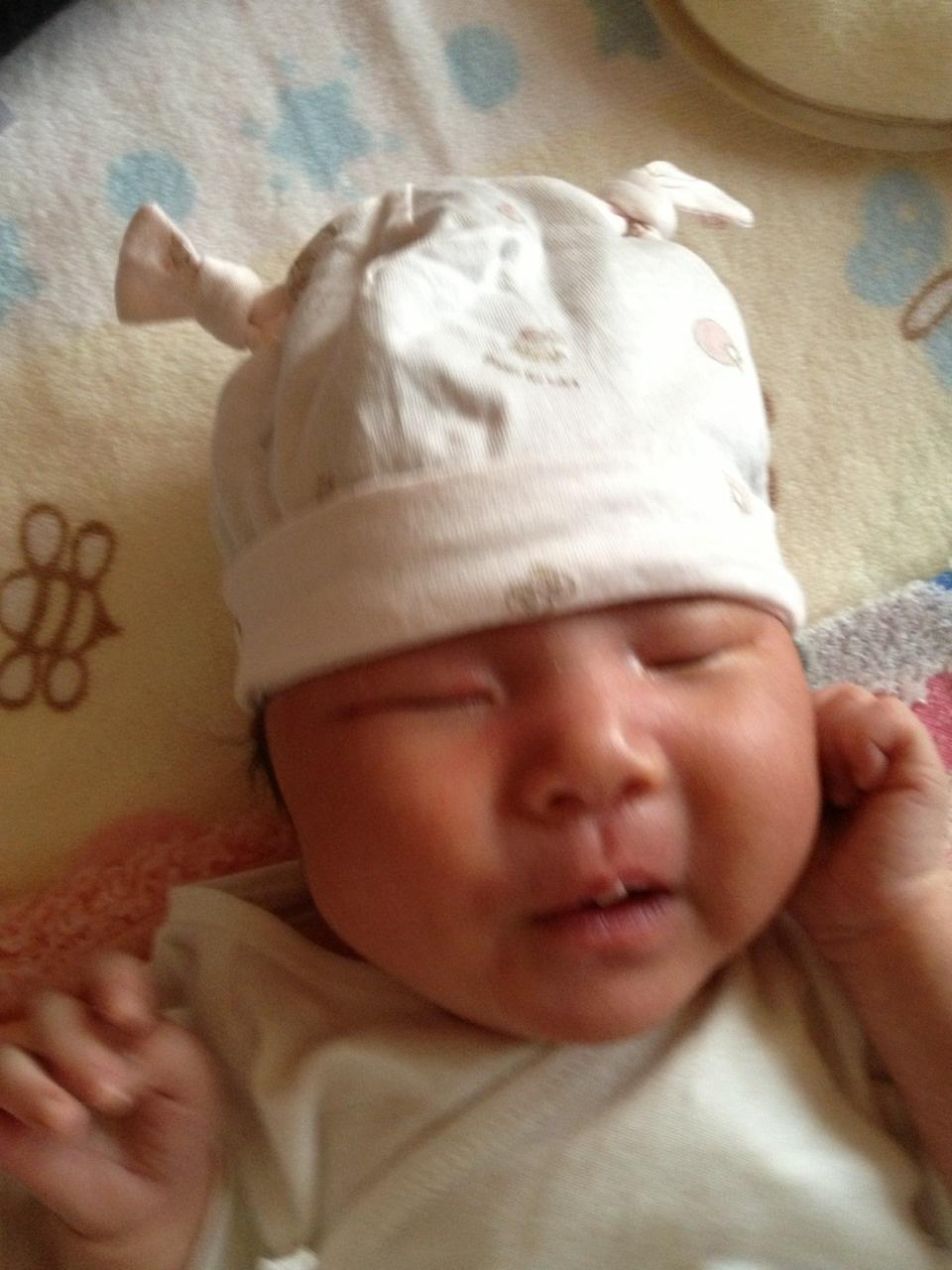 2014-04-26 耳の短いうさぎの帽子