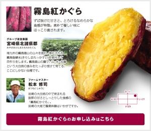item01.jpg
