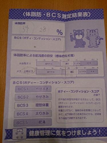 fc2_2014-03-09_20-24-40-781.jpg