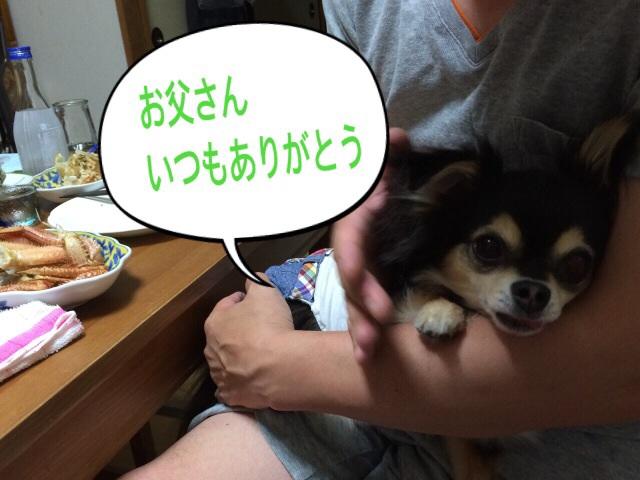 20140616092609a8d.jpg