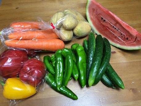 4野菜たち