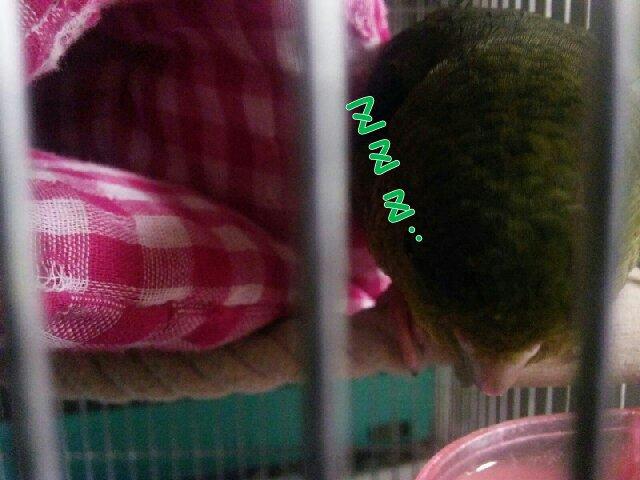 PicsPlay_1393244259723.jpg