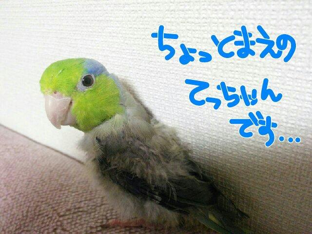 PicsPlay_1393491963907.jpg