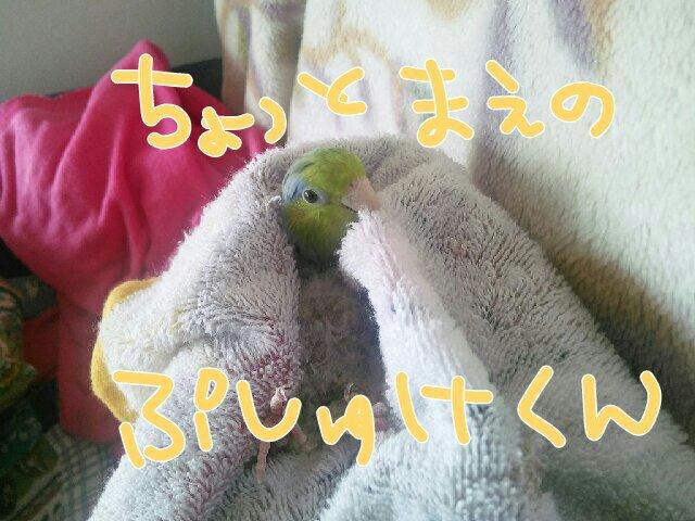 PicsPlay_1393813647038.jpg