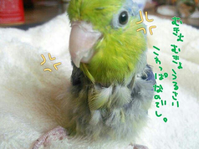PicsPlay_1394401355857.jpg