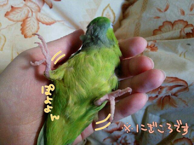 PicsPlay_1396920874562.jpg