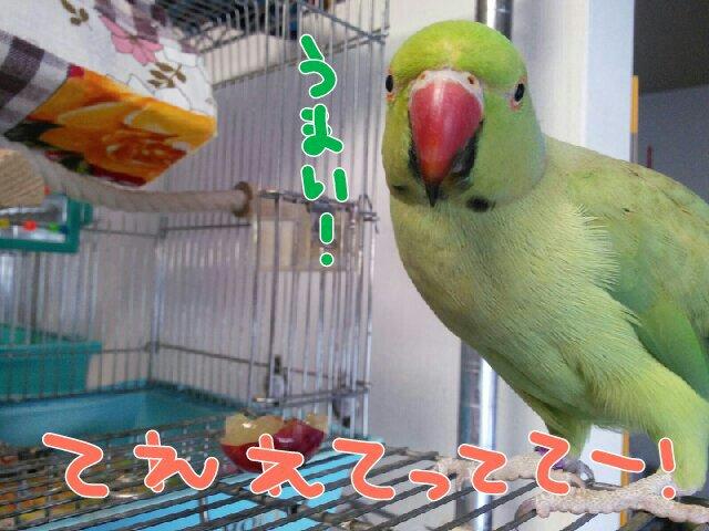 PicsPlay_1398071780893.jpg