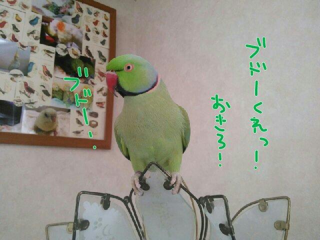 PicsPlay_1410846553558.jpg