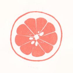 2014柑橘小