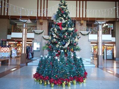 伊豆高原のクリスマスツリー