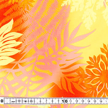 lcn-20076-50.jpg