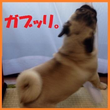 13_201403242150127fb.jpg