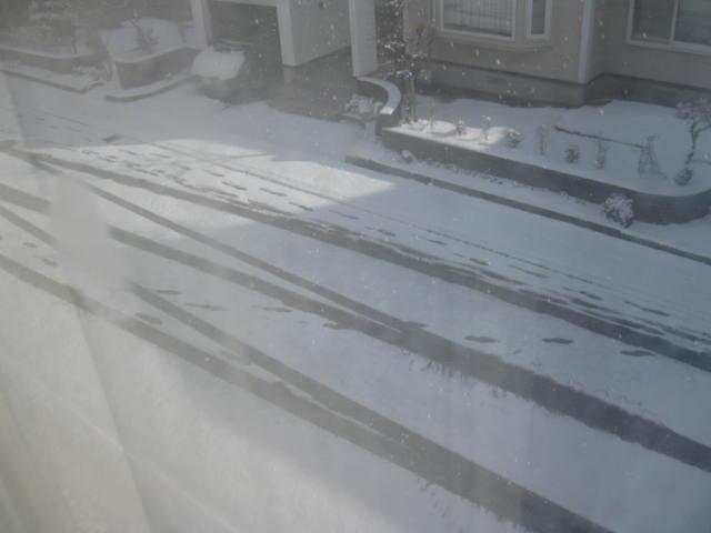 20140411 積雪