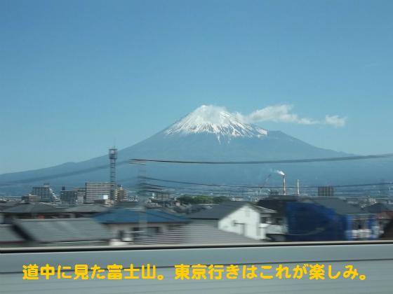 ぴょん子140518_01