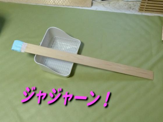 ぴょん子140602_04