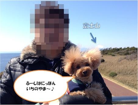 misaki_1.jpg