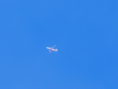 P3102413Jetstar GK107 A320 CTS行き