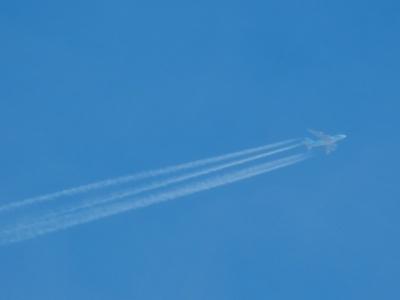 P5277262 KE18 LAX⇒ICN A380