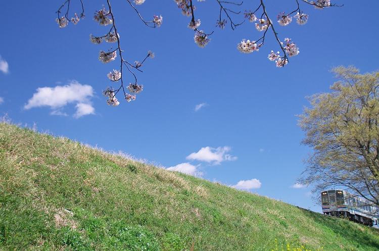 天浜線に桜咲く頃 4