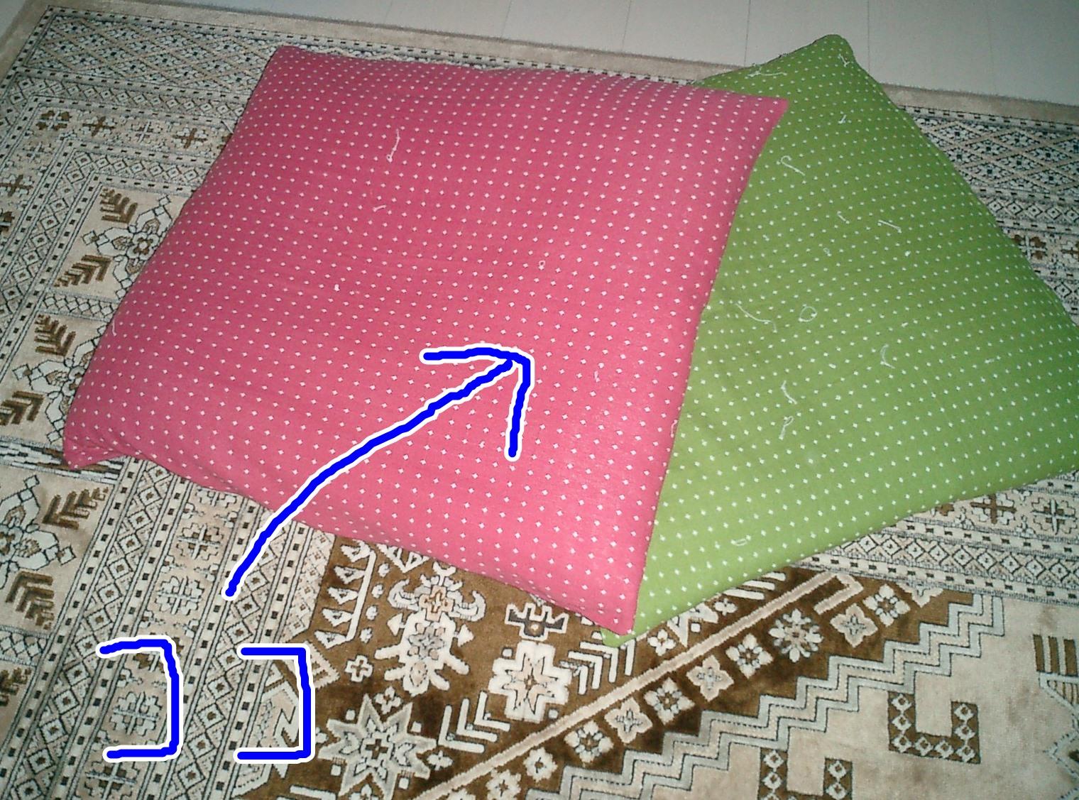 CIMG0170.jpg