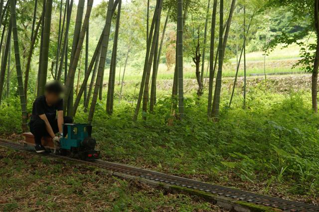 竹林線でオチビサン、走る。教習車になる