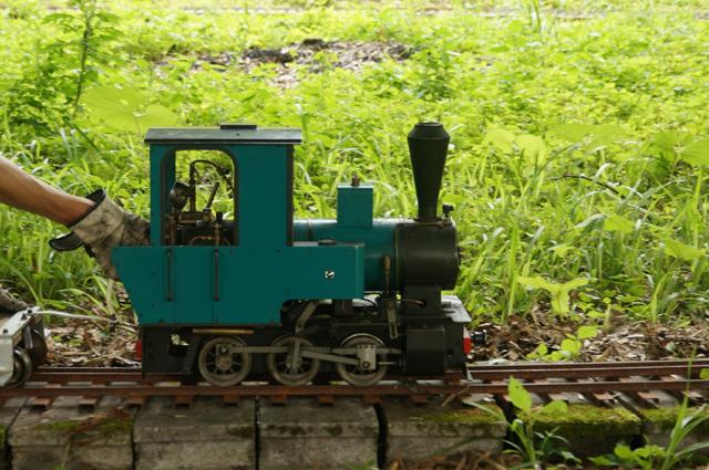 竹林線でオチビサン、走る 新緑の中を、走る