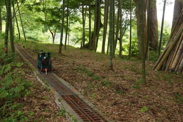 竹林線でオチビサン、走る