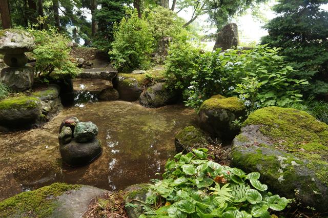 十日町の祖父の家の庭