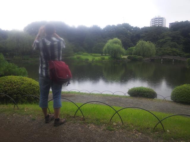 新宿御苑の日本風庭園