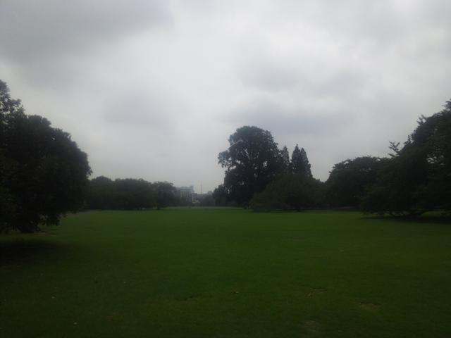 新宿御苑の広い広い芝生