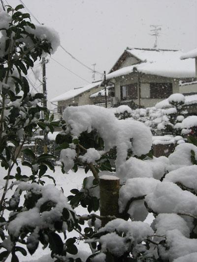 大雪 001