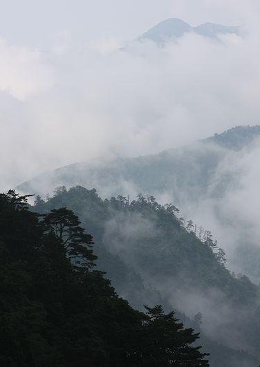 yosinoyama.jpg