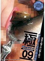 極フェチシリーズ09 うなぎと女性器図鑑