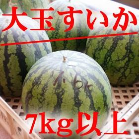 oodama_suika_400.jpg